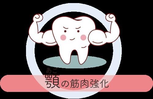 顎の筋肉強化